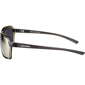 Alpina Finety Gafas, transparent-grey